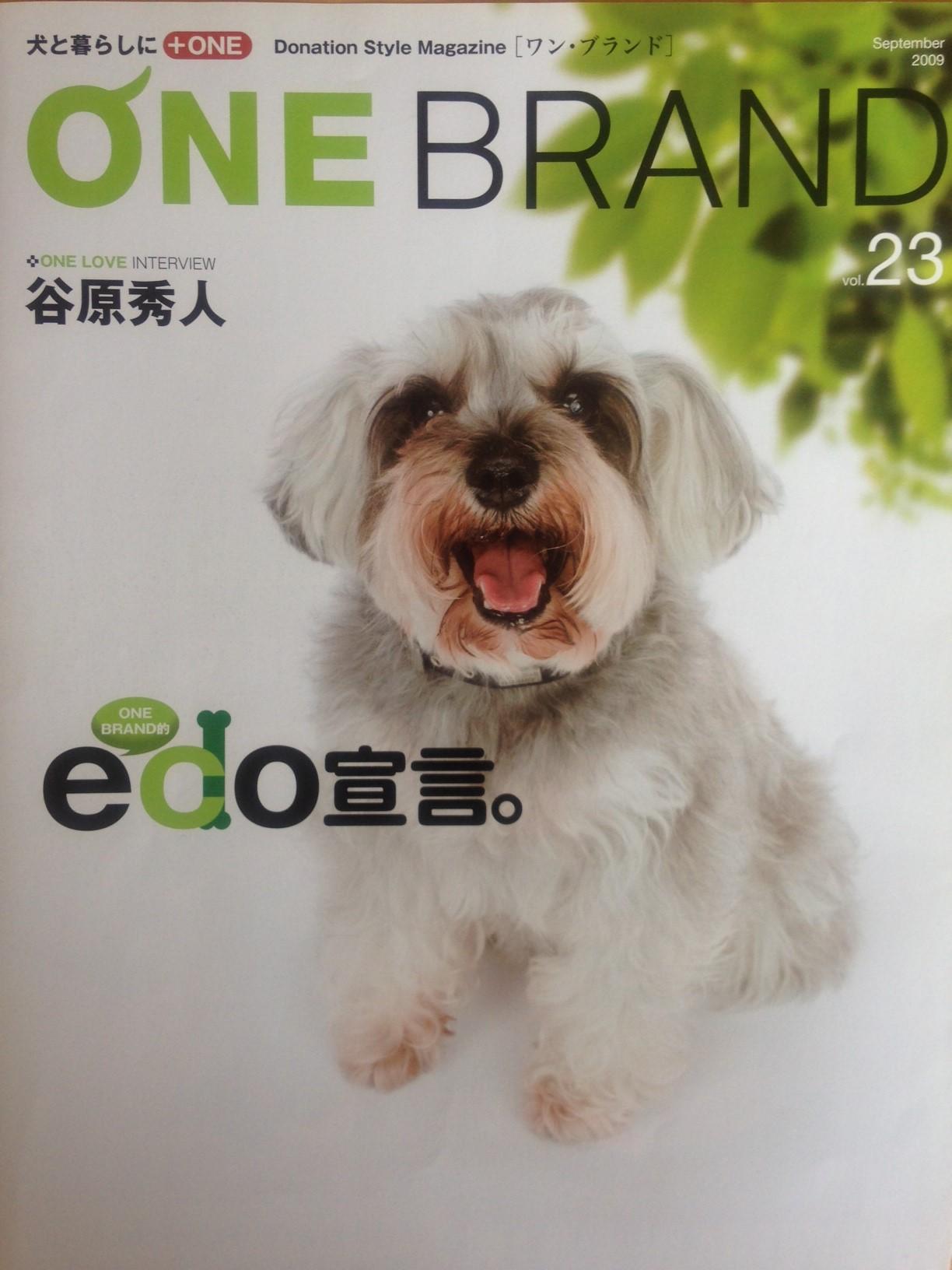 magazin1