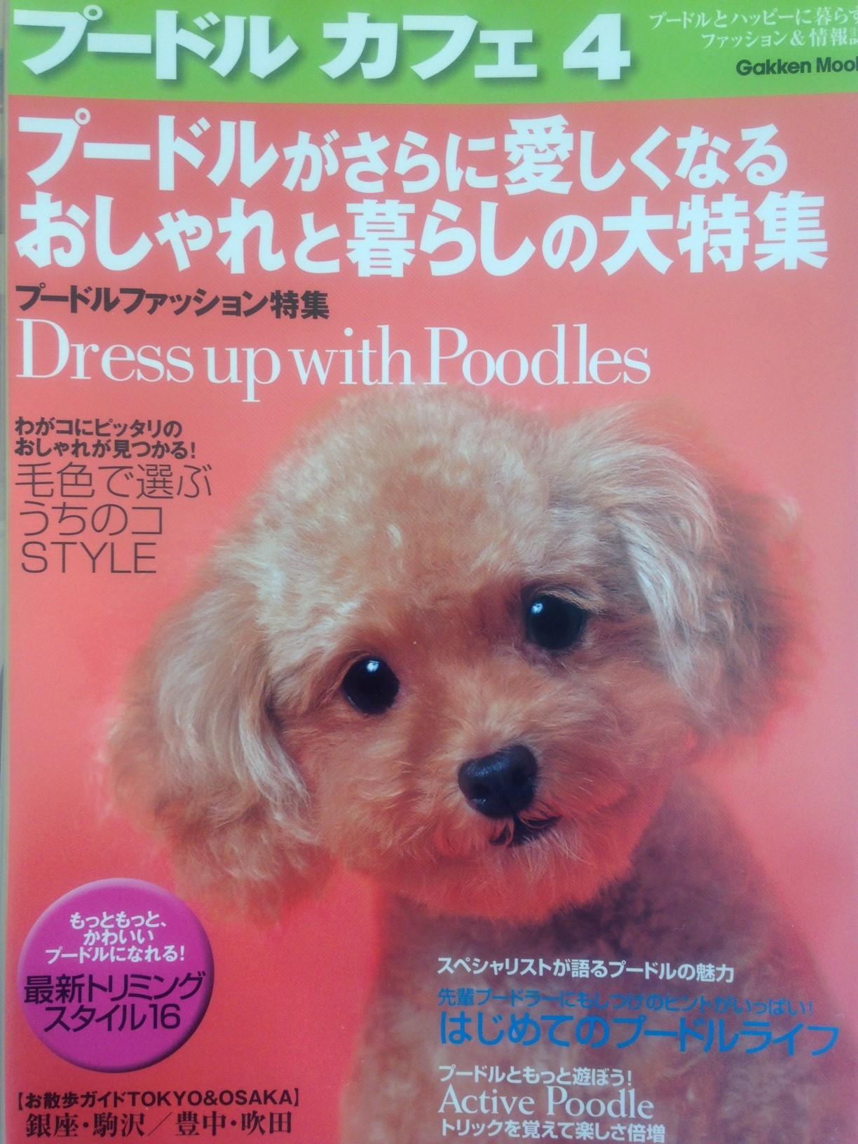 magazin11