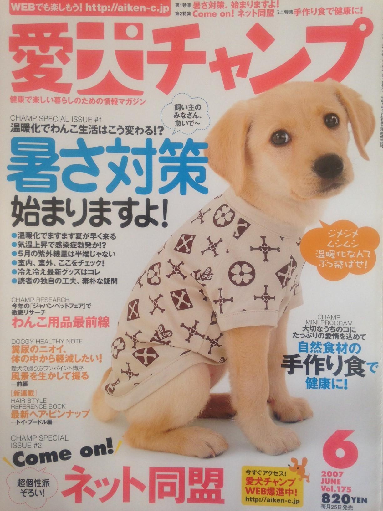 magazin18