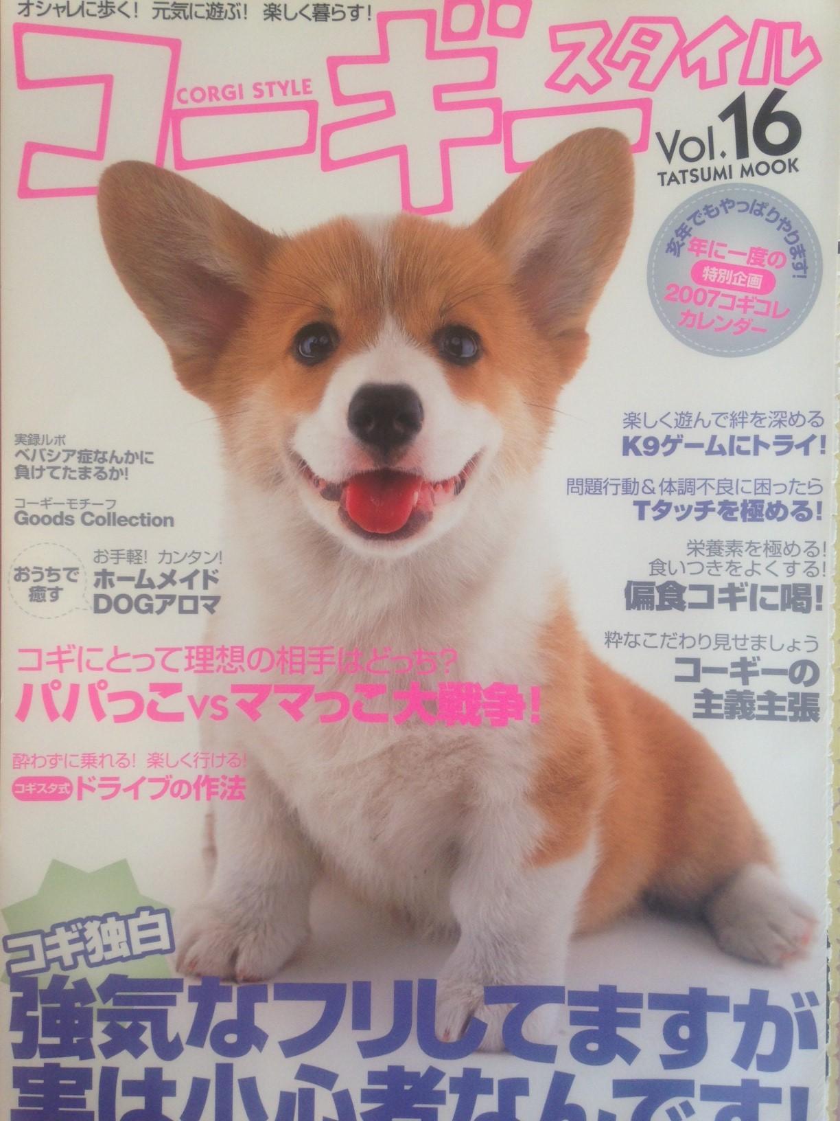 magazin20