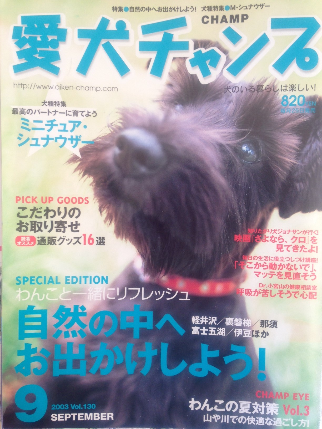 magazin9